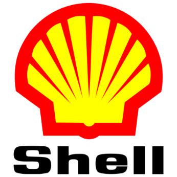 Olio Shell